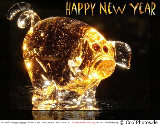 1229_01291_happy_new_year.jpg
