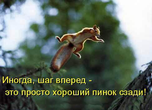 210234_208490.jpg