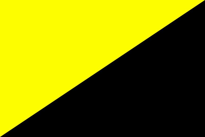 800px-Ancapflag_svg.png
