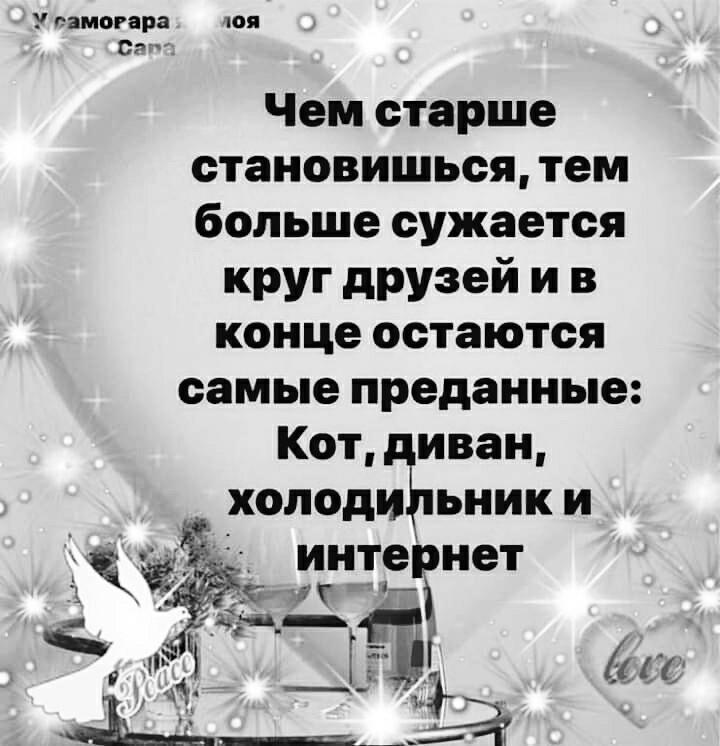CHem_starshe.jpg