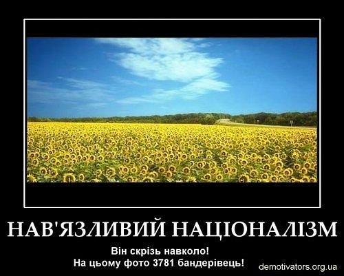x_60bc2b55.jpg